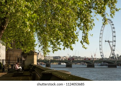 London, Greater London / United Kingdom - May 12 2018: Sunrise with clear sky over Thames and the London Eye seen from the Parliament park under a green tree with a woman reading on a bench