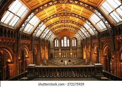 LONDON - JAN 11: Inside view of Natural History Museum, established 1881, designed by Alfred Waterhouse, annual visitors 5.4 million, located in South Kensington, on Jan 11, 2011, London, UK.
