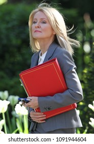 LONDON - MAY 15, 2018: Esther McVey, Secretary of State for Work and Pensions arrives to Downing Street for weekly cabinet meeting