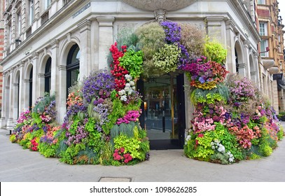London May 22, 2018: Chelsea merchants decorate their stores in celebration of the 2018 Royal Hospital Chelsea - RHS Flower Show