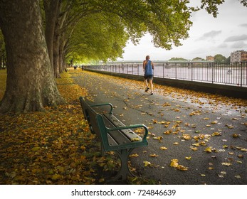 LONDON- SEPTEMBER, 2017: Man running on Thames Path in Wandsworth Park close to Putney, London.  Autumn trees and fallen leaves.