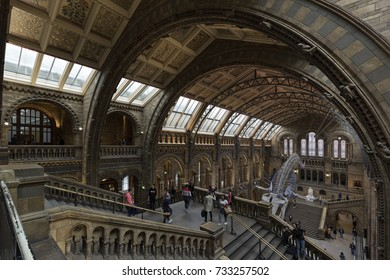 LONDON - SEPTEMBER 2017; Visitors in the main Hall with the blue whale skeleton in the Natural History Museum.