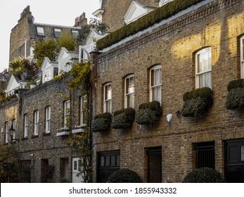 London South Kensington United Kingdom house street plant brick wall window