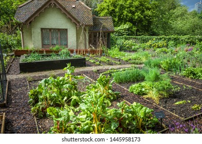 London, St Jame's Park, Uk 9th May 2019: Duck island cottage with vegetable garden  in St James's park, London, UK