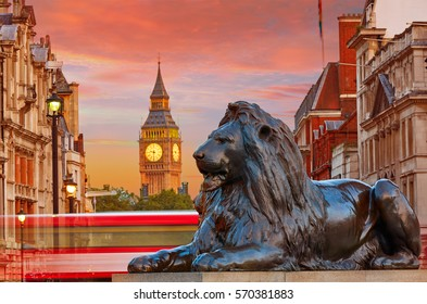 London Trafalgar Square lion and Big Ben tower at background