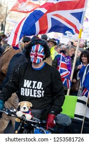 """London, UK, 12/09/2018: Tommy Robinson and UKIP  """"Brexit Betrayal"""" march in Central London. Pro-Brexit cyclist with Union Jack face paint and WTO Rules jumper"""