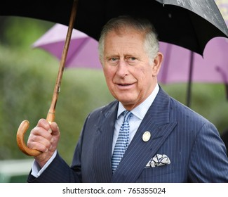 London, UK. 17 May, 2017. His Royal Highness The Prince of Wales attends the launch of the annual State of the World's Plants report and view the Great Broad Walk Borders at the Royal Botanic Gardens.