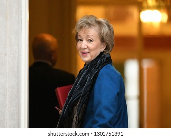 London, UK. 29 Januari, 2019. Andrea Leadsom MP, Leader of the House of Commons, Lord President of the Council, arrives at the Cabinet meeting.