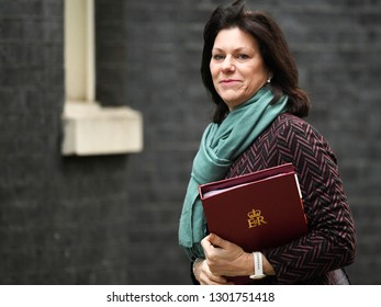 London, UK. 29 Januari, 2019. Claire Perry MP, Minister of State for Energy and Clean Growth, arrives at the Cabinet meeting.