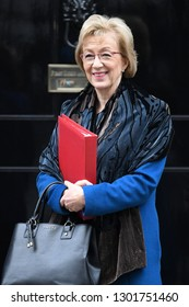 London, UK. 29 Januari, 2019. Andrea Leadsom MP, Leader of the House of Commons, Lord President of the Council, leaves the Cabinet meeting.