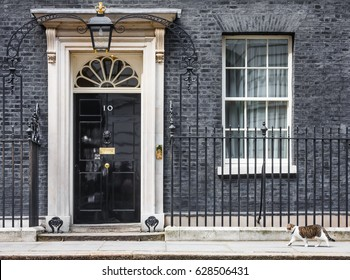 LONDON, UK - Apr 19, 2017: The cat named Larry is the 10 Downing Street cat and is Chief Mouser to the Cabinet Office. Larry is a brown and white tabby.