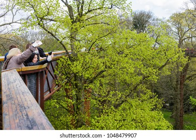 London, UK - April 18, 2014. Tourists take selfies from the Treetop Walkway at Kew Botanic Gardens. The walkway allows visitors to walk through 200 metres of forest canopy