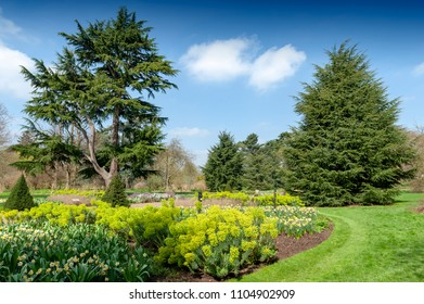 London, UK - April 2018: Great Broad Walk Borders, a floral ornamental promenade and botanic garden planted with various plants and trees at Kew Gardens