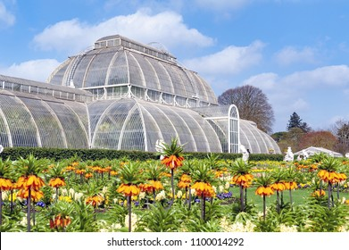 London, UK - April 2018: Palm House, an iconic Victorian glasshouse that recreates rainforest climate for the exhibition of living collection of tropical plants, located at Kew Garden, England