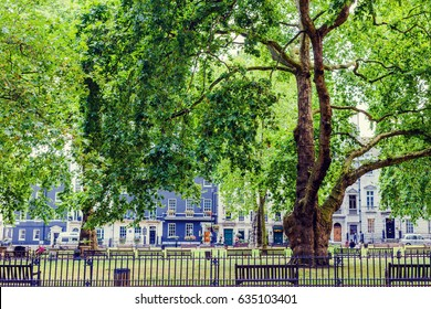 LONDON, UK - August 10, 2014:detail of the beautiful park of Berkeley Square Gardens in Central London in Mayfair
