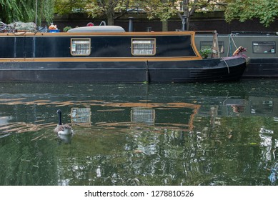 LONDON, UK - CIRCA SEPTEMBER 2014: Houseboat and Canada goose in Little Venice, Paddington. Editorial use only.