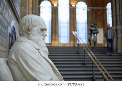 LONDON, UK - DECEMBER 11: Profile of Charles Darwin statue at the Natural History Museum. December 11, 2014 in London.