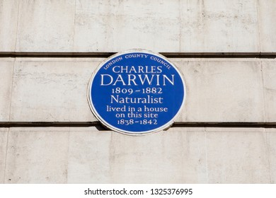 London, UK - February 26th 2019: A blue plaque on Gower Street in London, marking the location where Charles Darwin once lived.