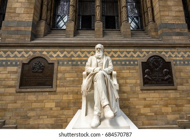 London, UK - July 25, 2017: The Charles Darwin marble statue decorating the Hintze hall in the Natural History Museum of London