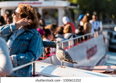 London, UK - June 22, 2018: Many tourists sitting in boat cruise ship tour on Thames River with seagull