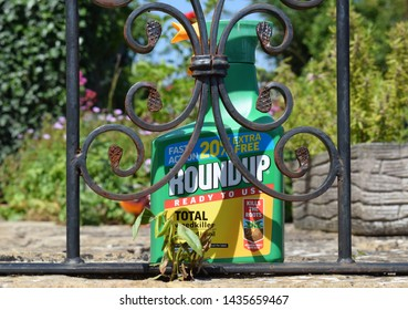 London, UK. June 27 2019. A spray bottle of RoundUp weedkiller in front of a dying sprayed weed on a patio in a garden