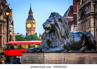 London, UK - June 6, 2016 - Lion sculpture at the base of Nelson's Column in Trafalgar Square with Big Ben in the background.