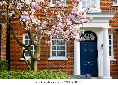 LONDON, UK - MARCH 11th, 2019: Magnolia tree is blooming in front of elegant building in Kensignton area in Central  London