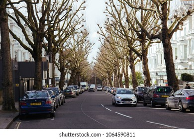 London, UK - March 15 2018: Holland Park Street lined with large plane trees. Street is passing along the North side of the Holland Park in Royal Borough of Kensington and Chelsea, West London, UK