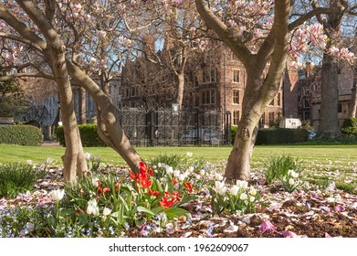 LONDON, UK - MARCH 28, 2012:  View across the New Square gardens at Lincoln's Inn, an Inn of Court in Holborn
