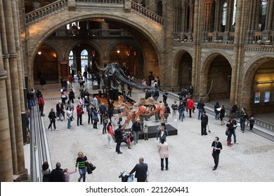 LONDON, UK - MAY 14, 2012: People visit Natural History Museum in London. With more than 4.1 million annual visitors it is the 4th most visited museum in the UK.