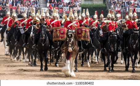 London UK, May 2018. Beautiful drum horse with Household Cavalry behind, taking part in the Trooping the Colour ceremony, London UK, photographed on a sunny day at Horse Guards Parade.
