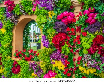 LONDON, UK - MAY 25, 2017: RHS Chelsea Flower Show.