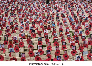 LONDON, UK - NOV 11: Poppies at the Westminster Abbey Garden of Remembrance, on Nov 11, 2015 in London UK. Members of the armed forces who lost their lives in Afghanistan a photo adds to the poignancy