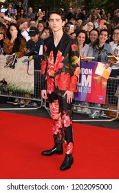 """LONDON, UK. October 13, 2018: Timothee Chalamet at the London Film Festival screening of """"Beautiful Boy"""" at the Cineworld Leicester Square, London."""