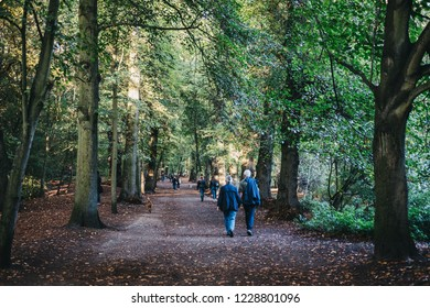 London, UK - October 27, 2018: People walking on a path between the trees in Hampstead Heath at dusk. Hampstead Heath covers 320 hectares one of London's most popular open spaces.