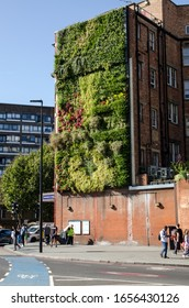 London, UK - September 21, 2019: Pollution preventing plants growing on a living wall at the busy traffic junction at Elephant and Castle in Southwark, London.