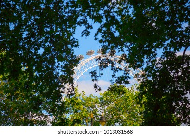 LONDON, UK, UNITED KINGDOM - JULY, 2016: View of The London Eye behind  trees in London. At a height of 135m, it is the tallest Ferris wheel in Europe.