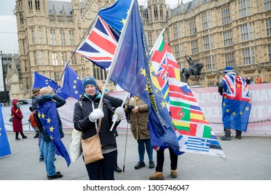 London, United Kingdom, 31st January 2019:- Anti Brexit, Pro European Unions Protesters outside the Houses of Parliament