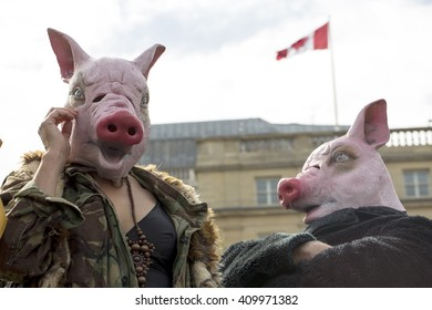 London, United Kingdom - April 16, 2016: Anti-Austerity March. Two people came dressed as pigs to represent the general feeling on the march that the Conservative government are as greedy as pigs.