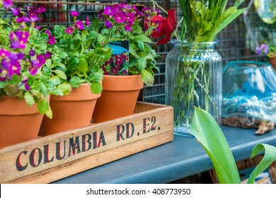 London, United Kingdom - April 17, 2016: Columbia Road Flower Sunday market. Shop windows display
