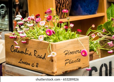London, United Kingdom - April 30, 2017: Columbia Road Flower Sunday market. Wooden boxes in a shop display.