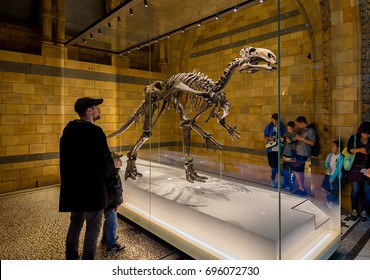 London, United Kingdom. Circa August 2017. Kid and his father watch interested a dinosaur in Natural History Museum of London.