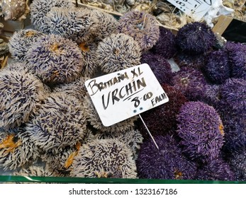 London, United Kingdom - February 24, 2019: Borough Market, one of the oldest, largest, and the most popular food markets in Southwark, London. Urchins at fish stall