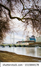 London, United Kingdom - March 23 2019 - The London Eye from far through the red tree leaves in spring. Thames river and sand in background. Cloudy sky, HDR shot to enhance the details. Framed shoot.