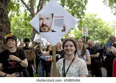 London, United Kingdom - May 29, 2017: Anti Fox Hunting. After Prime Minister May put forth the suggestion of a free vote on reintroducing fox hunting, people from around Britain came out to protest.