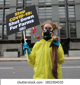 LONDON, UNITED KINGDOM - November 11  2020: PETA activists stage a rotes outside Danish embassy in London against mink fur farming recently came into public attention with mutated coronavirus strain.