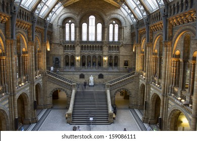 LONDON, UNITED KINGDOM - OCT 09: Interior view of Natural History Museum on October 09, 2013 in London, UK. The museum'Â?Â?s collections comprise almost 70 million specimens from all parts of the world.