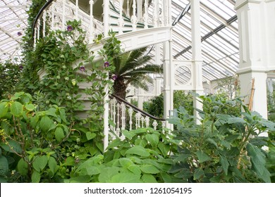 London, United Kingdom - October 8, 2018; plants and stairs in the temperate house the largest victorian glasshouse in the world at Royal Botanical Gardens, Kew in Richmond upon Thames