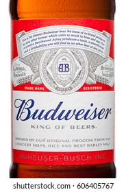 LONDON,UK - MARCH 21, 2017 : Bottle label of Budweiser Beer on white background with reflection, an American lager first introduced in 1876.