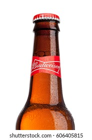 LONDON,UK - MARCH 21, 2017 : Bottle of Budweiser Beer on white background with label, an American lager first introduced in 1876.